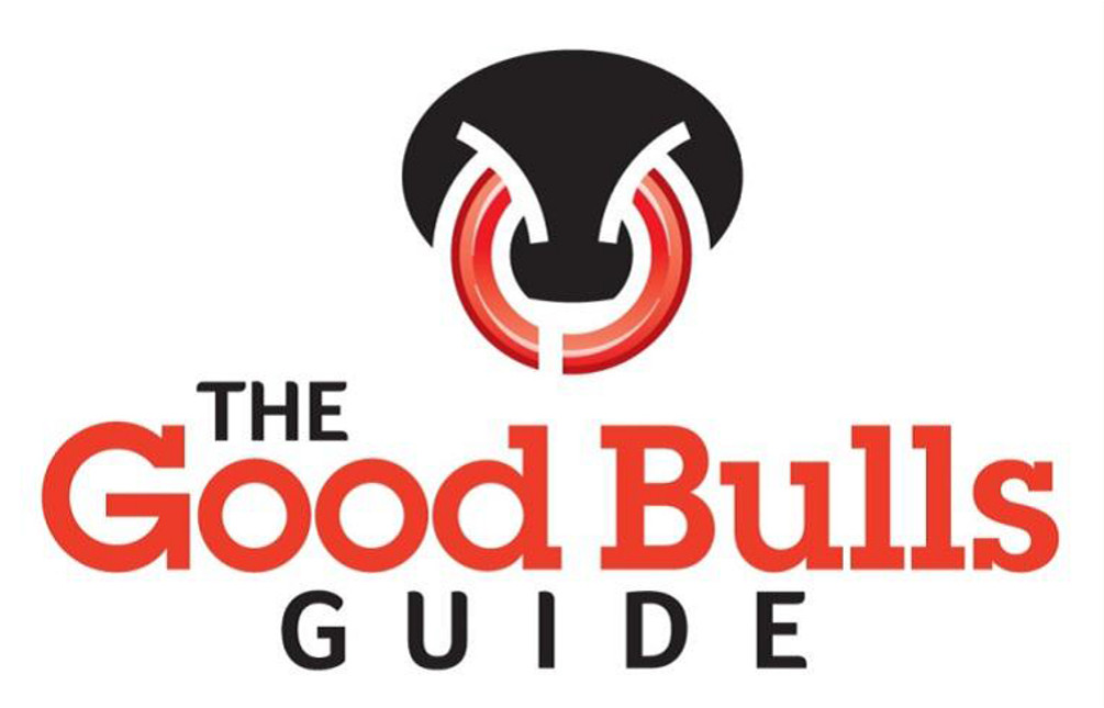 Good Bulls Guide Project Logic