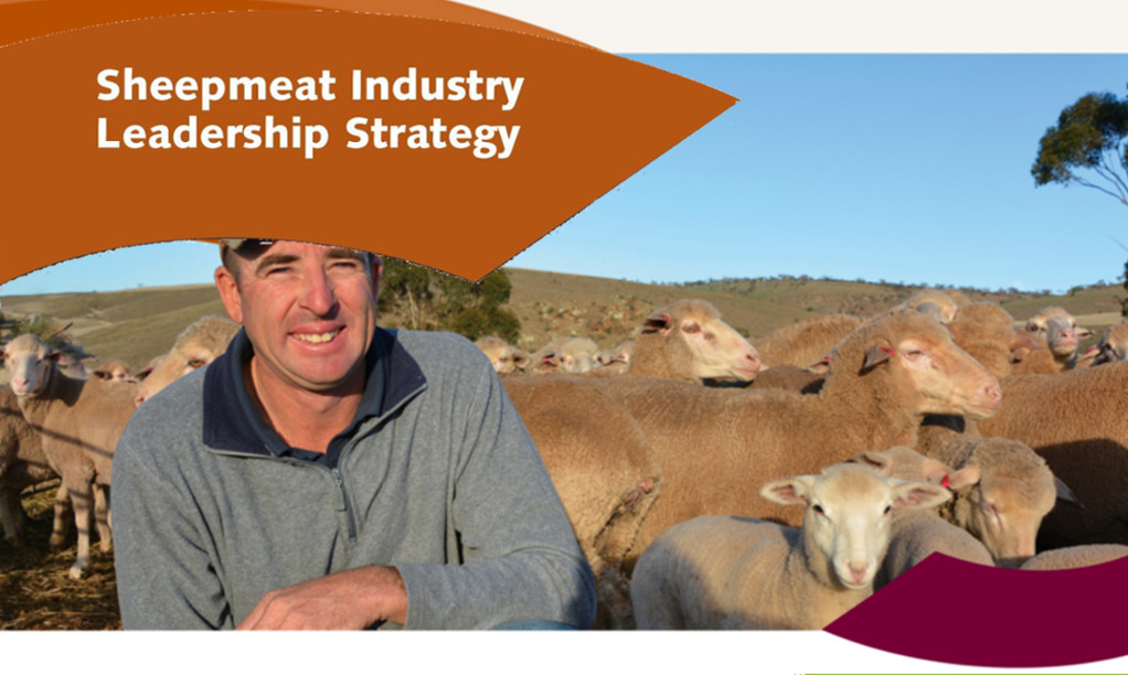 Sheepmeat Industry Leadership Strategy